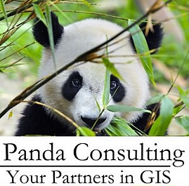 Panda_Consulting.png