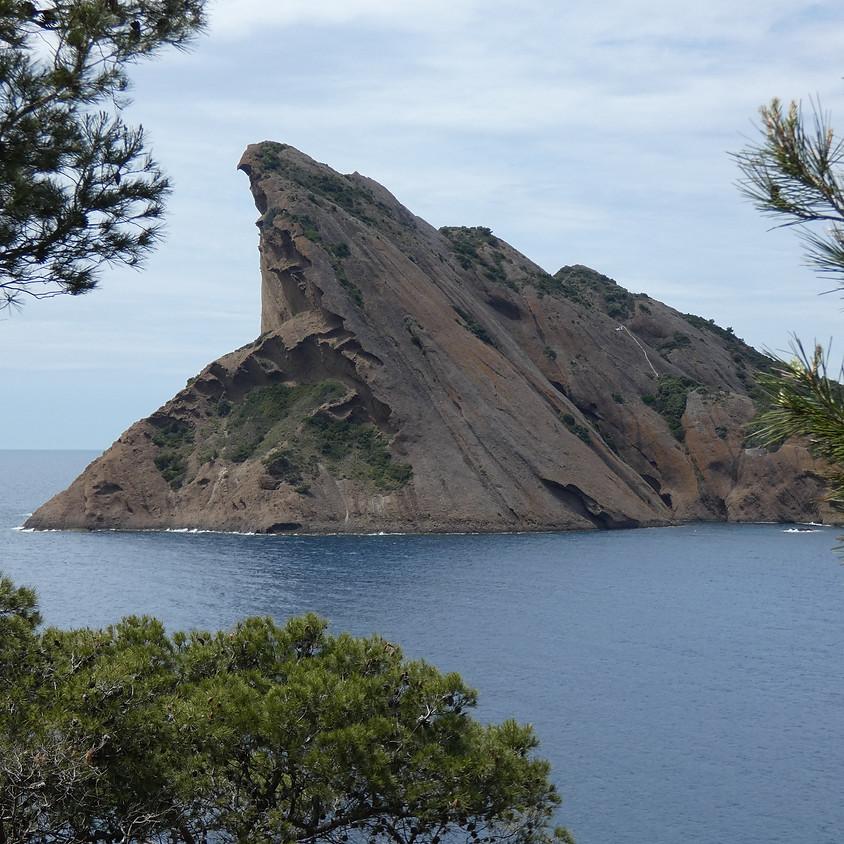 Balade estivale : L'île Verte : petite île mais grande histoire !