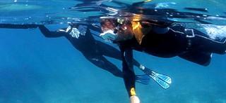 Bon bilan pour les sentiers sous-marins
