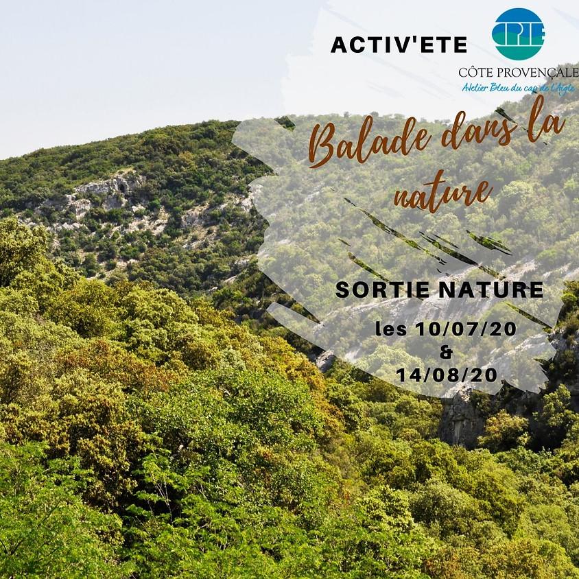 """ACTIV'ETE spécial """"sorties"""" : """"Balade dans la nature"""""""