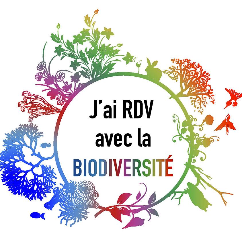 Les Rendez-vous biodiversité de l'été