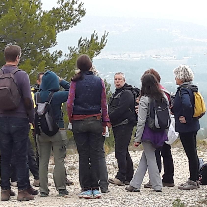 Balade nature et patrimoine des Passeurs de Chemins (9)
