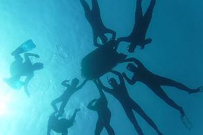 teambuilding atelier bleu snorkeling
