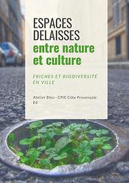 Friches_et_biodiversité_urbaines-Espace