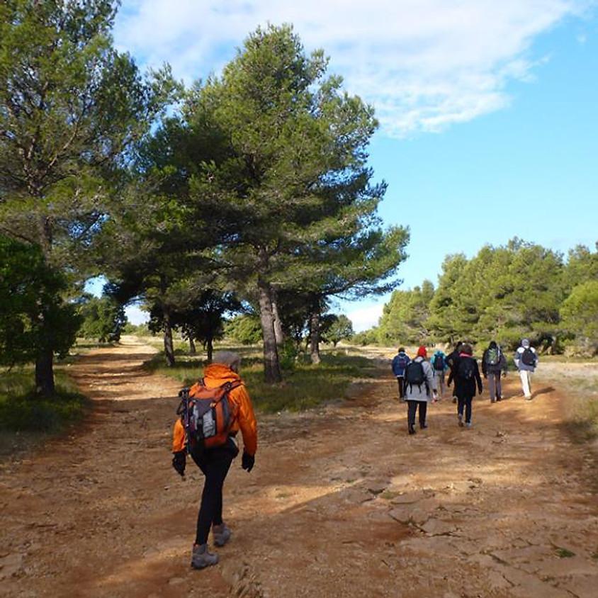Balade nature et patrimoine des Passeurs de Chemins (11)