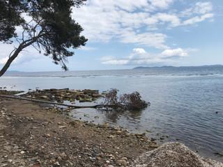 L'Atelier Bleu - CPIE engagé pour une gestion durable du littoral !