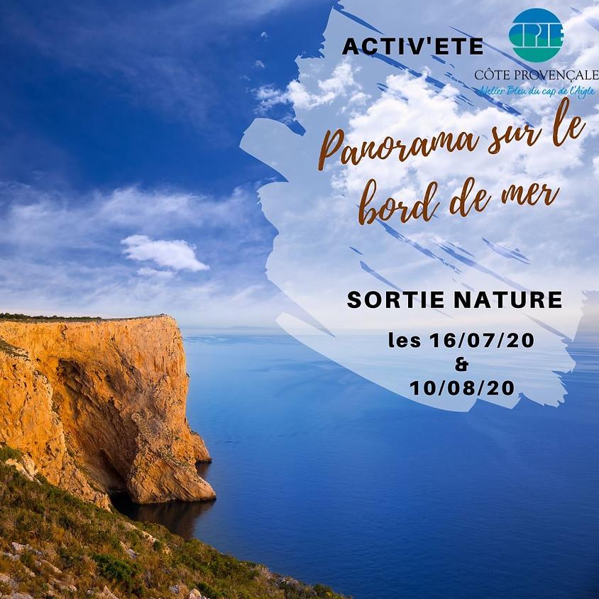 """ACTIV'ETE spécial """"sorties"""" : """"Panorama sur le bord de mer"""" (2)"""
