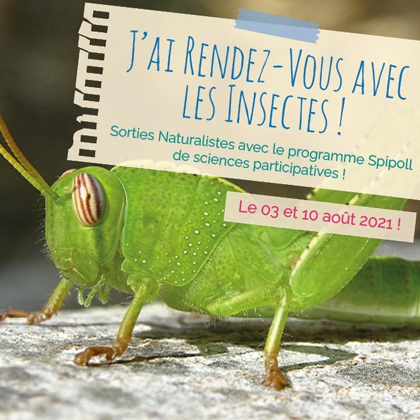 J'ai rendez-vous avec la biodiversité : à la découverte des insectes !