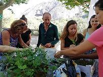 bénévoles Atelier Bleu CPIE Cote Provençale.jpg
