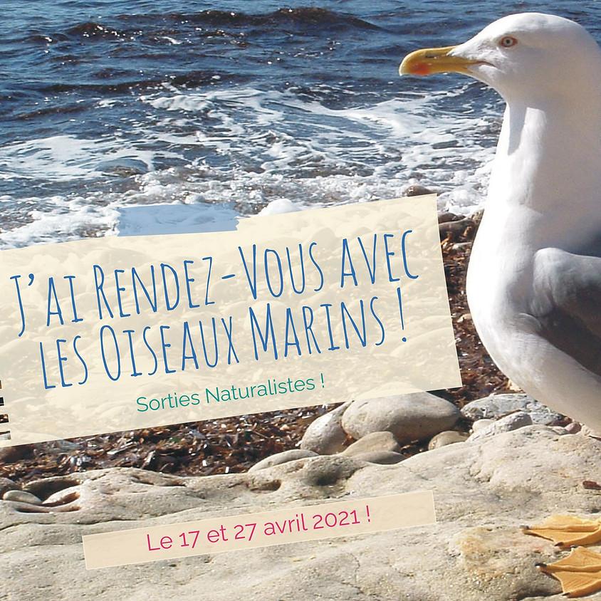 J'ai rendez-vous avec la biodiversité : à la découverte des oiseaux marins !