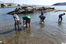 découverte de la mer