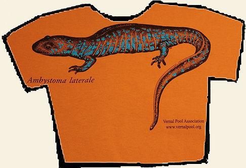 Blue-spotted salamander t-shirt