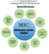 Mic Info Pic.png