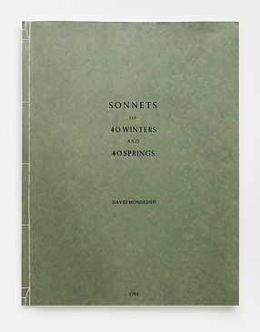 Sonnets of 40 Winters and Springs