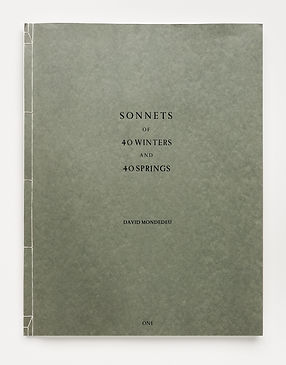 Sonnets of 40 Winters and 40 Springs