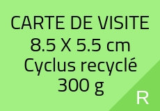 300 Cartes de visite 5.5 X 8.5 cm. Cyclus recyclé 300 g. Couleur recto