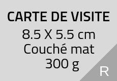 1000 Cartes de visite 5.5 X 8.5 cm. Couché mat 300 g. Couleur recto