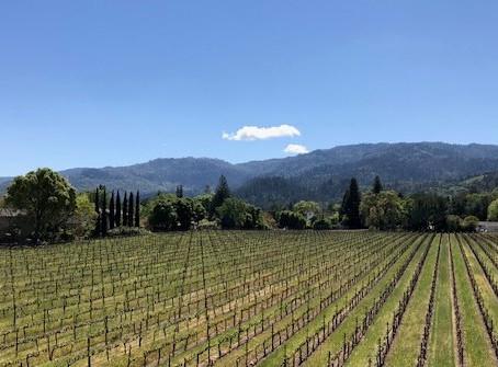 Do you love wine, great food or wonderful scenery?