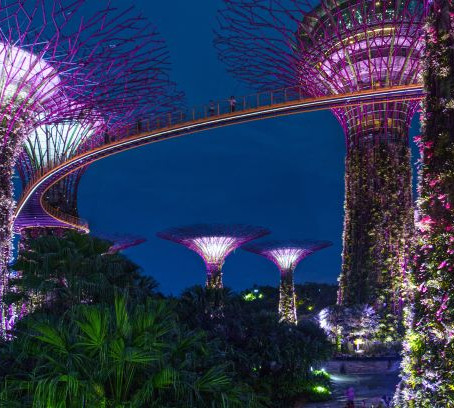 10 Must Do's When In Singapore