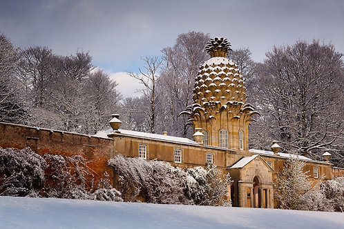 The Pineapple, Airth
