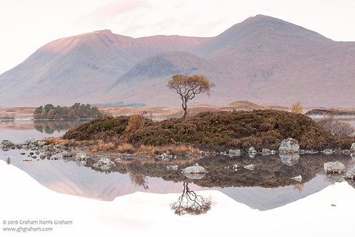 Tranquility, Rannoch Moor, Argyll (Print Only)