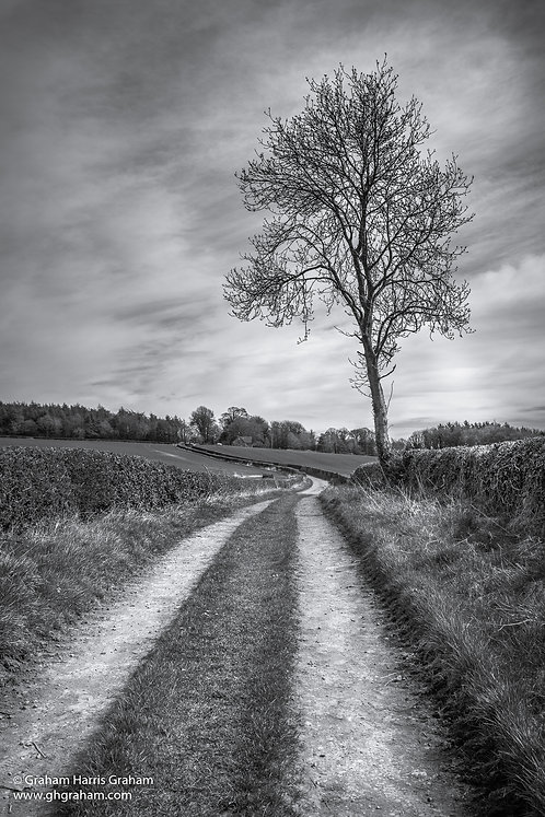 Event Horizon, West Fife (Print Only)