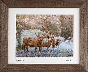 Standard Walnut Frame (2400 x 1600) (1 o