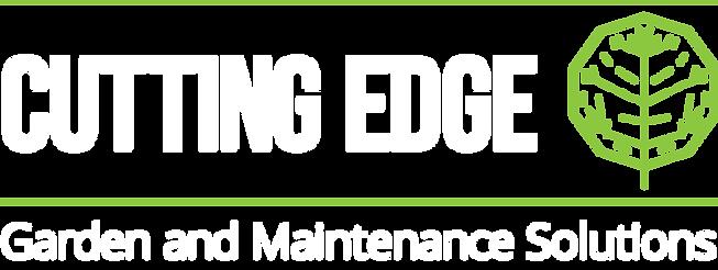 Logo T shirt white-green.png