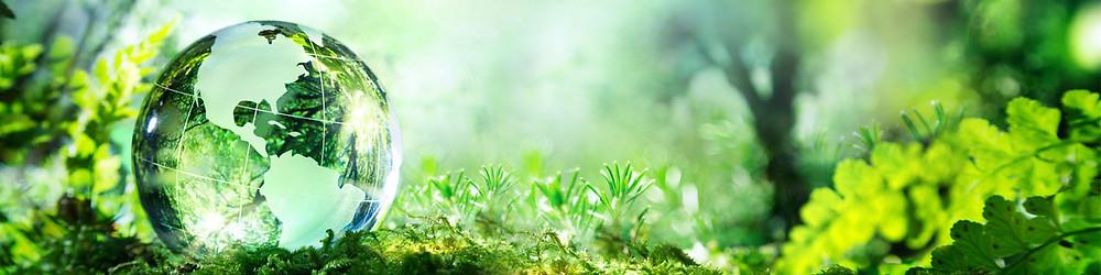 , ISO14001, remoção de odores, práticas sustentáveis, sustentabilidade, certificação ISO 14001.