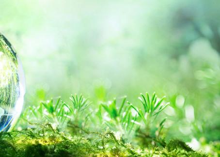 Como adotar práticas sustentáveis de remoção de odores - Entenda a ISO14001.