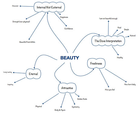 3S Framework flowchart to explored various facets of beauty