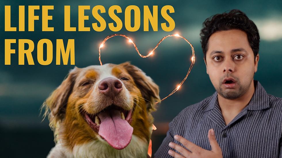 Brilliant Relationship Advice I Got From My Dog