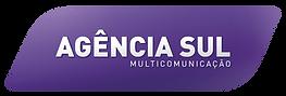 Logo Agência Sul_Prancheta 1.png