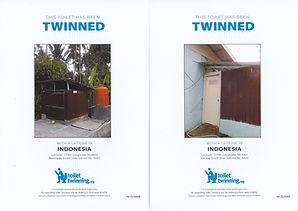 ToiletTwinning.jpg