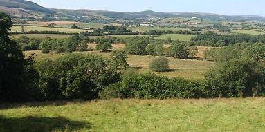 Cambrian hills from Cefn Gorwydd