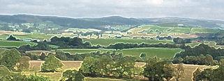 autumnhills, Cambrians