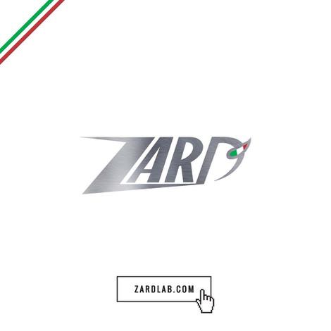 zard 排氣管 eu-racing 台灣