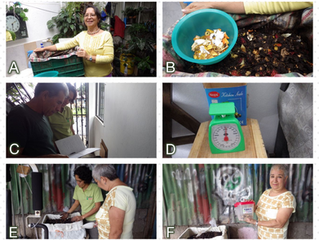 Experiencias de Compostadores de Santa Rosa, Santo Domingo, Heredia, Costa Rica.