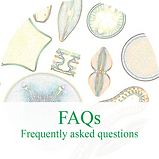 Food Grade Diatomaceous Earth FAQ
