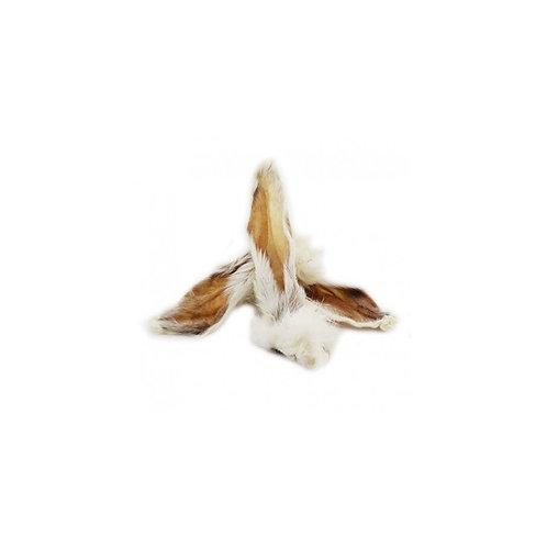 Oreilles de lapin avec poils