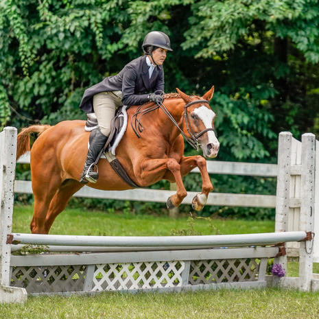 The Pines Horse Show - Sept 27