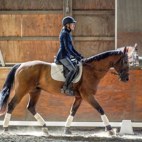 CT Dressage and Combined Training Clinic