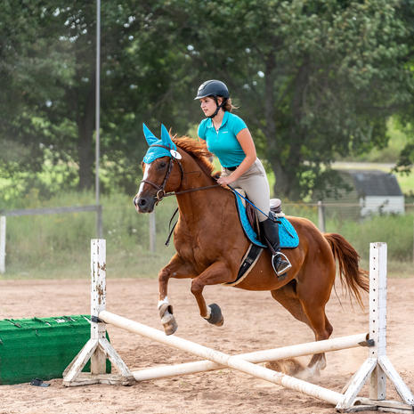 JC Eventing Jumper Show - Aug 7
