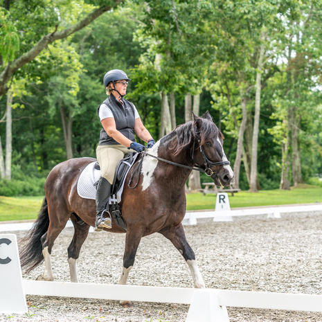 CT Dressage and Combined Training Halloween Show