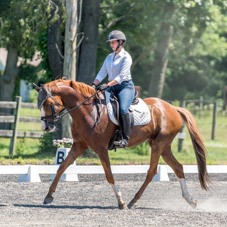 CT Dressage and Combined Training Show - Oct 2-4