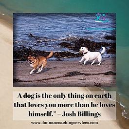 Dog quote.jpg