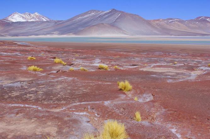 Altiplanic Lagoon, Atacama desert, Chile