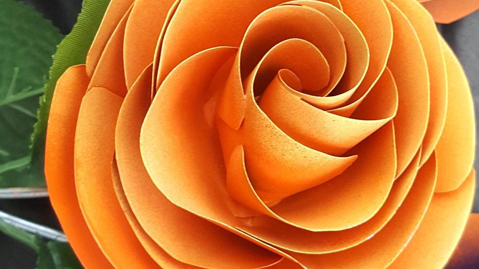 FB101 1 Individual Rose