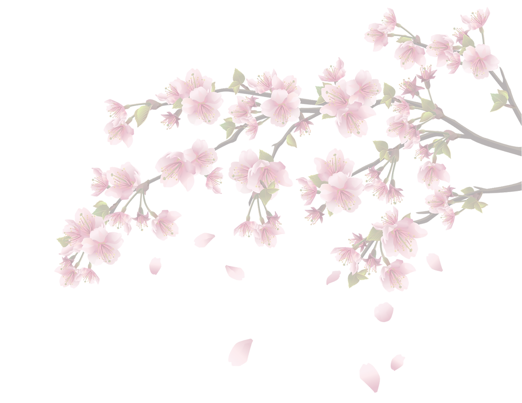 oha flowers3 png.png