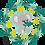 Thumbnail: KENNY Koala Buddy